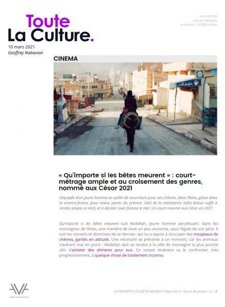 Qu'importe si les bêtes meurent - film - court métrage - Sofia Alaoui - César 2021 - relations presse - Toute La Culture