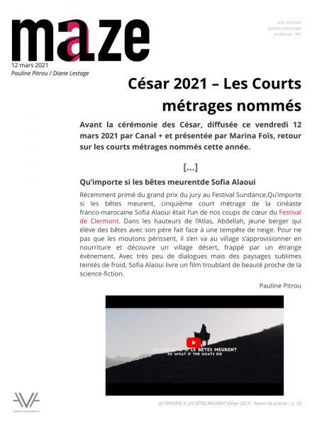 Qu'importe si les bêtes meurent - film - court métrage - Sofia Alaoui - César 2021 - relations presse - Maze